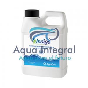 Indigo-bacterias-litro