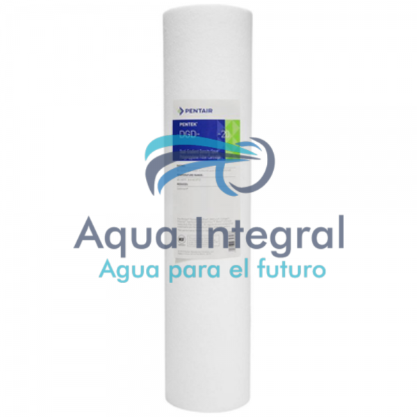 cartucho-filtrante-pentair-modelo-dgd-2501-20-polydepth